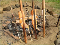 Salmon steaks being traditionally cooked on cedar stakes around a fire.