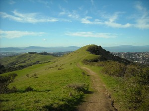 Bolinas Ridge Trail