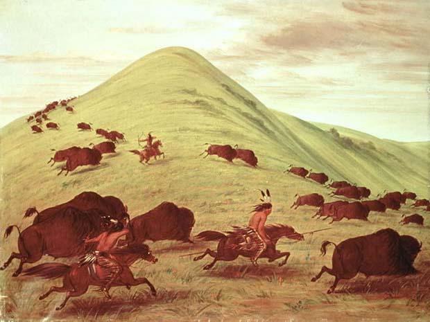 George Catlin, Buffalo Hunt