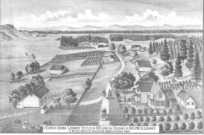 Drawing of the Jesse Looney Farm 1887